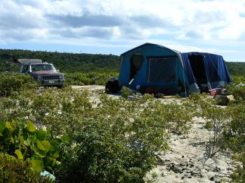 camping-on-barbuda