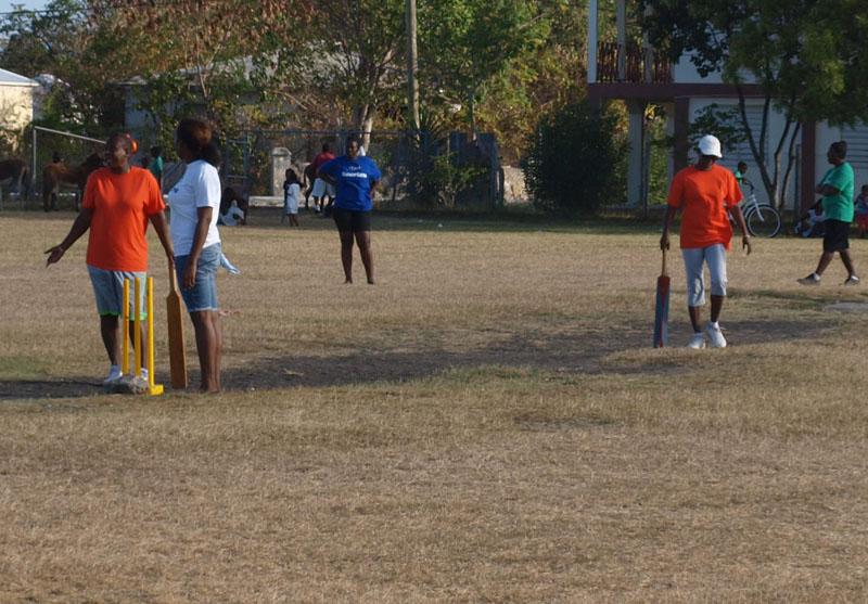 fun day cricket